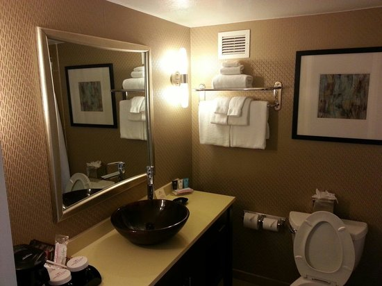Crowne Plaza Sacramento : View of the bathroom