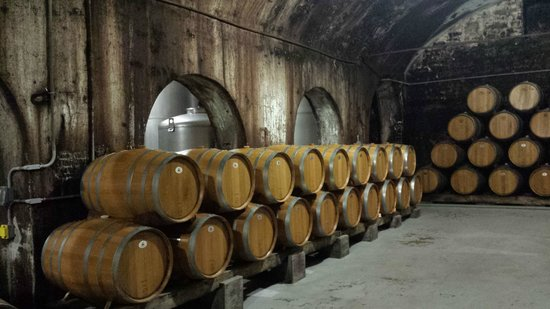 Stone Hill Winery : Cellars