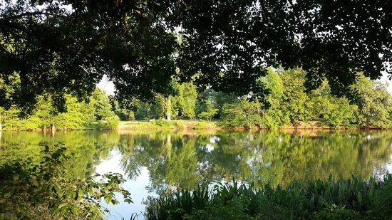 Parc Piedmont : Sunset colors