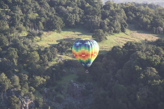 Napa Valley Balloons, Inc. : Playing in the woods...