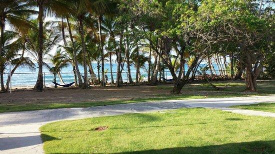 Parador MaunaCaribe: Areas verdes