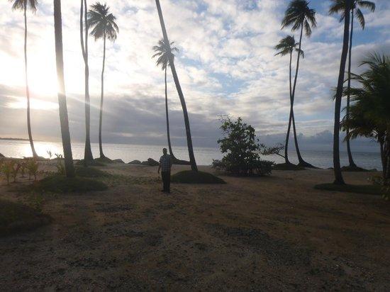 Gran Melia Golf Resort Puerto Rico : Beach steps away from Room