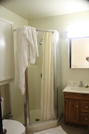 Kawada Hotel: バスルーム