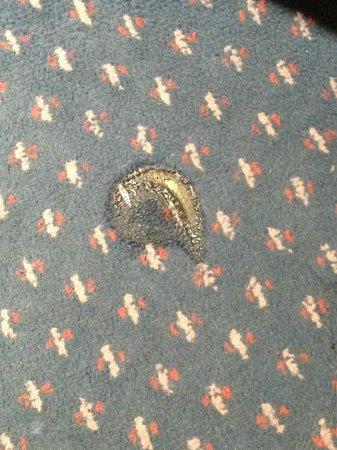 Hotel Regence: Melted carpet