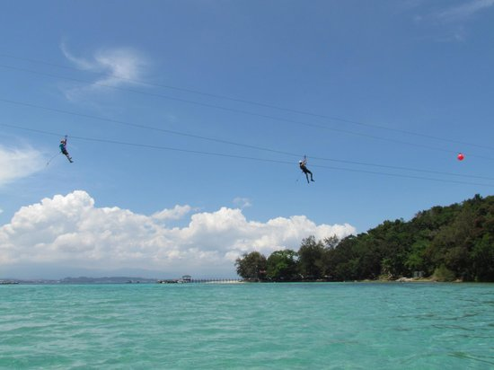 Coral Flyer: Its along way