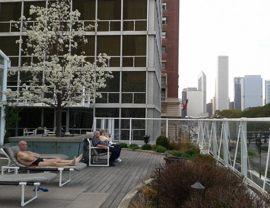 Chicago's Essex Inn : Outdoor Terrace