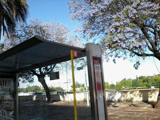 Residencia Deportistas La Cartuja: fermata del BUS