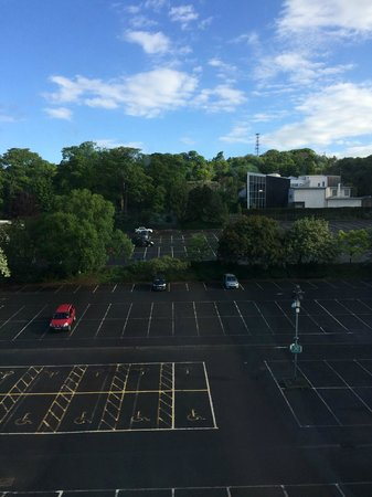 Holiday Inn Edinburgh: View from my room. This is the zoo parking and chimps enclosure