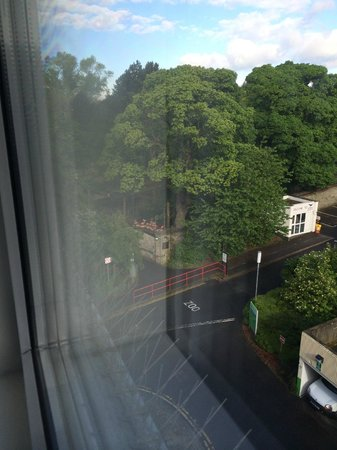Holiday Inn Edinburgh: View from my room. Flamingos and entrance path to zoo