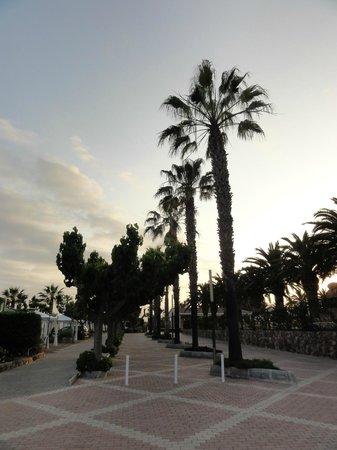 Camping Resort Sangulí Salou: Immaculate parc grounds