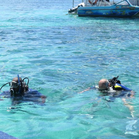 Dive Time: In the lagoon