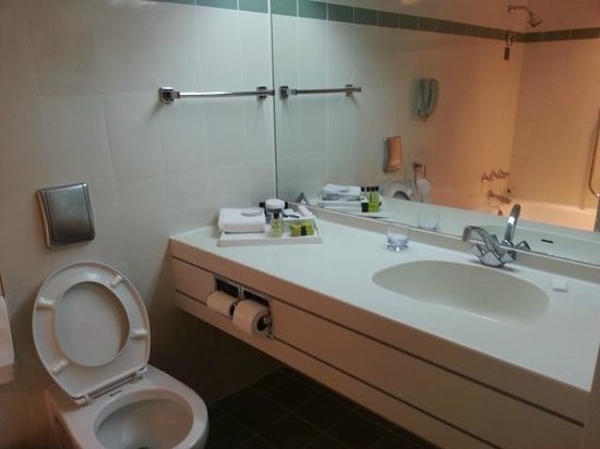 InterContinental Hotel Muscat: Lavatory