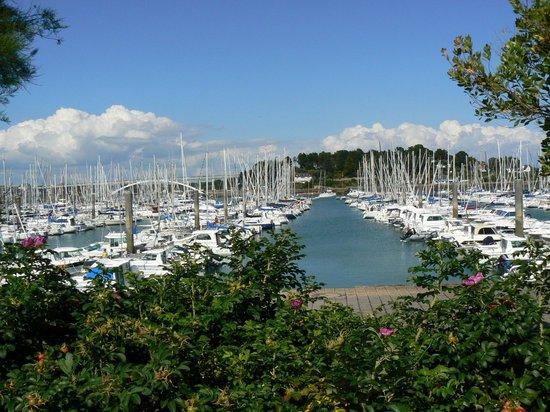 Le port de plaisance en fleurs de la trinit sur mer - Office de tourisme la trinite sur mer ...