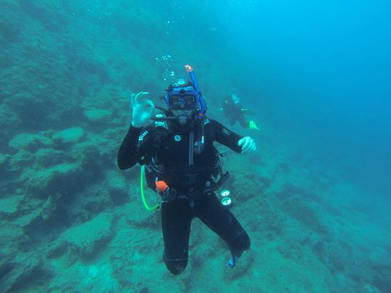 Diving Centre Blue Dolphin: it's me