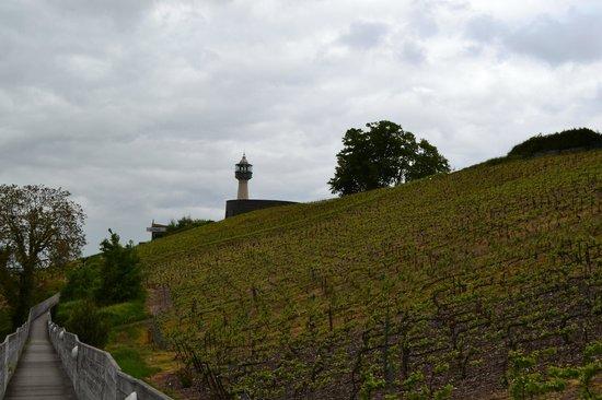 Le Phare de Vezernay : Le phare au milieu des vignes