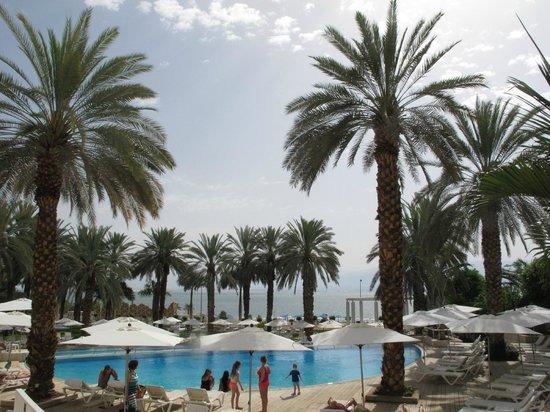 Isrotel Dead Sea Hotel & Spa : pool