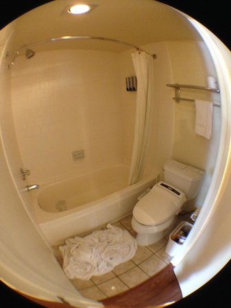 Monterey Park Inn : Bathroom
