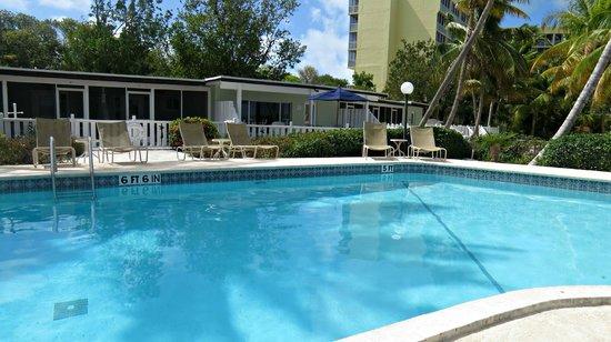 Coconut Palm Inn: pool area
