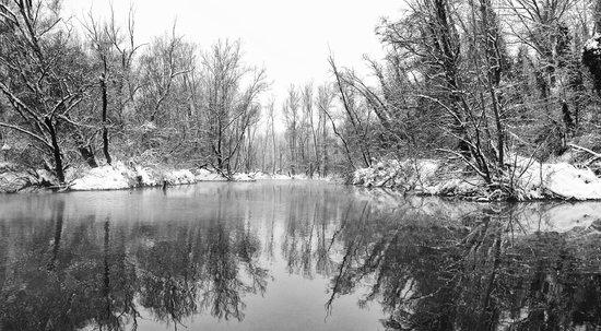 Zelata, Italie : ...Sulle rive innevate del Ticino