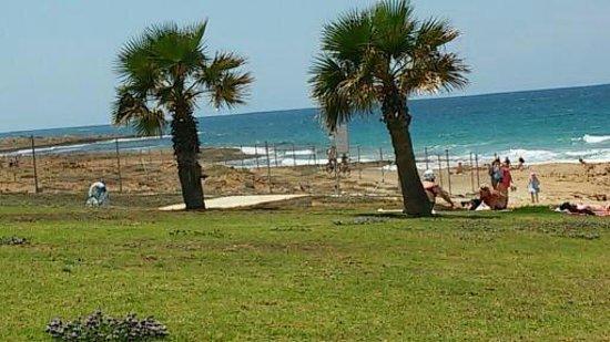 Avlida Hotel : пляж через дорогу от отеля