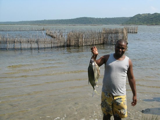 Utshwayelo Lodge: Fish Traps