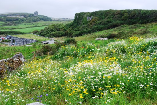 Doolin Cave : Views from the Nature Trail