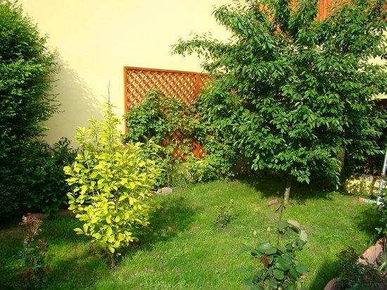 Pensiunea Magnolia Sibiu : www.pensiuneamagnolia.ro
