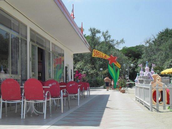 Stella Beach 77 - 78: Bar vista lato pineta