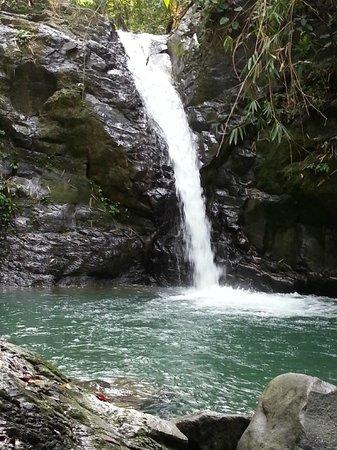 Uvita Waterfall: Look at that pool!