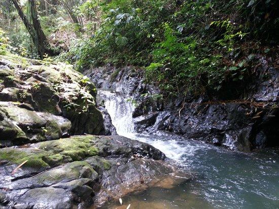 Uvita Waterfall: Small stream at the top