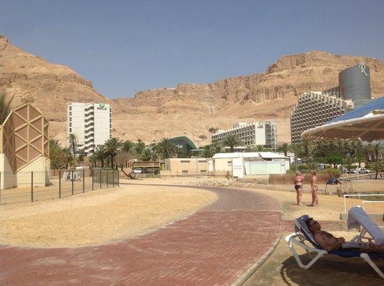 Prima Oasis Dead Sea: Вид на отель со стороны пляжа