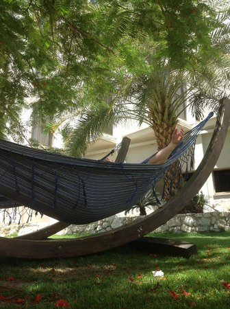 Prima Oasis Dead Sea: Зона отдыха