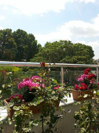 Raymond Blue Hotel: Flower garden