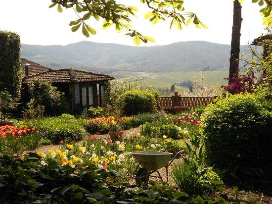 Villa Le Barone : Magnificent Gardens