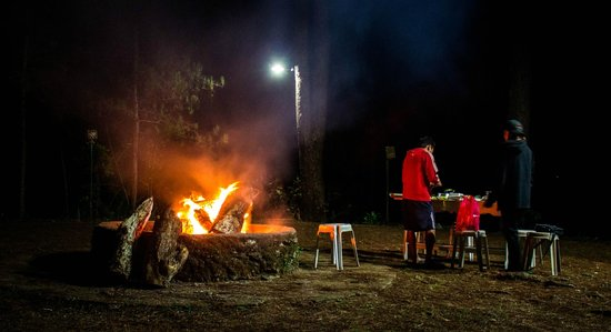 Mount Tepeyac: bonfire at night, surrounded by pine trees