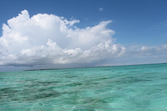 Turneffe Flats: The incredible scenery at Turneffe Atoll