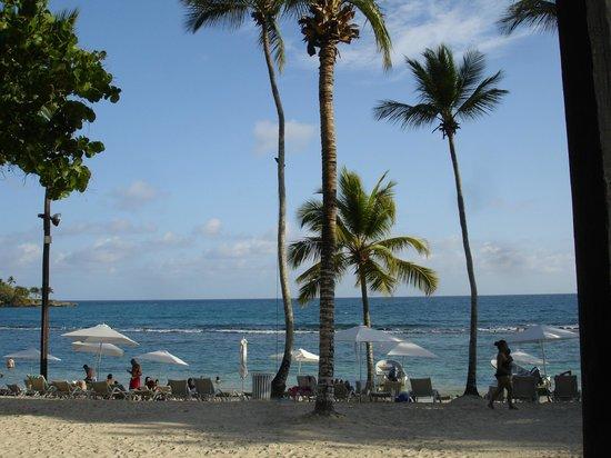 Casa de Campo Resort & Villas : Playa Minitas en Casa de Campo