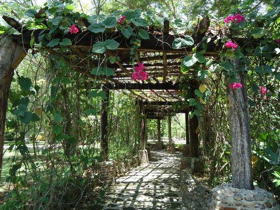 Casa de Campo Resort & Villas: Altos de Chavon