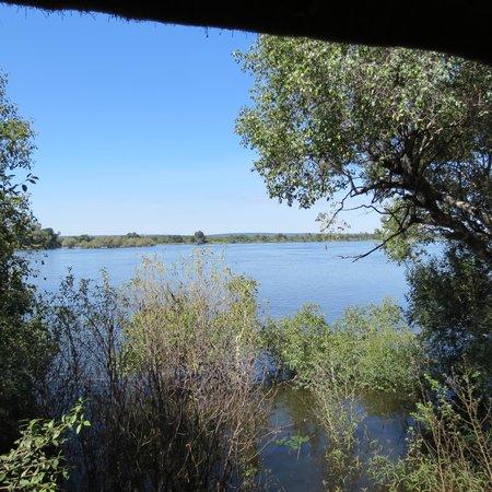 Chundukwa River Lodge: View from the window