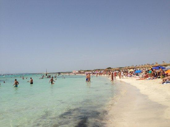 Playa de Es Trenc: Пляж Эс Тренк