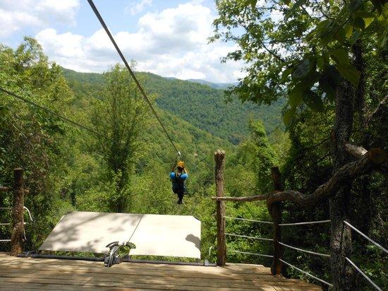 Navitat Canopy Adventures - Asheville Zipline: A zip