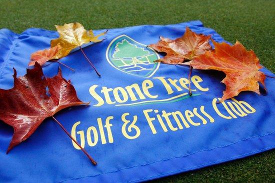 Stone Tree Lounge
