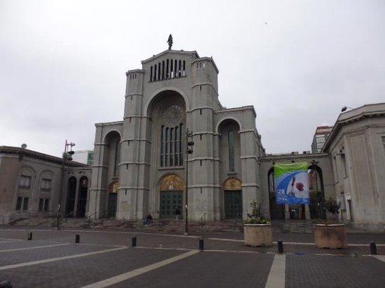 Catedral de la Santisima Concepcion : 教会