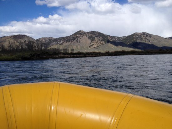 Teton Scenic Floats and Fly Fishing : On the Snake river