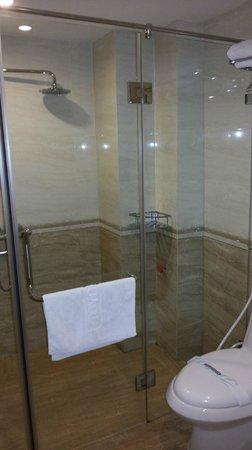 Golden Art Hotel : Shower area