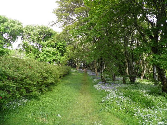 Tighard Guest House: The path to the restaurant