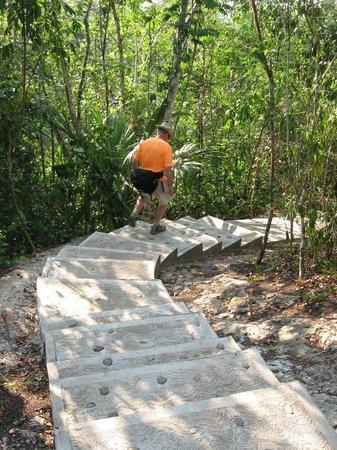 Amber Sunset Jungle Resort : walkway