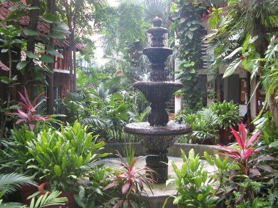 Eco-Hotel El Rey Del Caribe: Courtyard