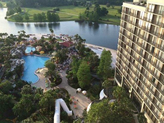 Hyatt Regency Grand Cypress : view overlooking pool towards Disney.