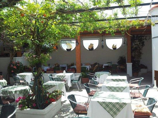 Hotel Villa Sirena: Il giardino. ..